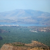 Amfissa - Largest Olive Grove of Greece